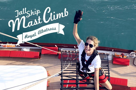 Royal Albatross Mast Climb