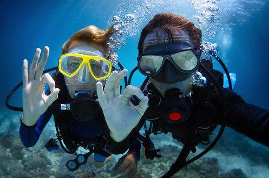 PADI Scuba Diver Course in Playa del...