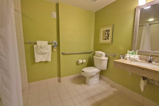 Holiday Inn Express Hotel & Suites New Tampa I-75 Bruce B. Downs: Guest room amenity