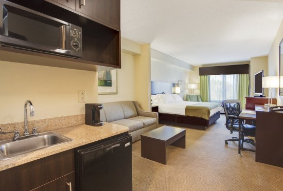 Holiday Inn Express Hotel & Suites New Tampa I-75 Bruce B. Downs: Suite
