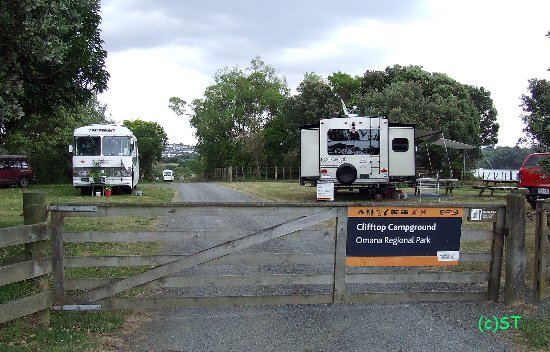 Maraetai Bay, New Zealand: Clifftop campground