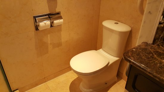 Mandarin Orchard Singapore: Toilet