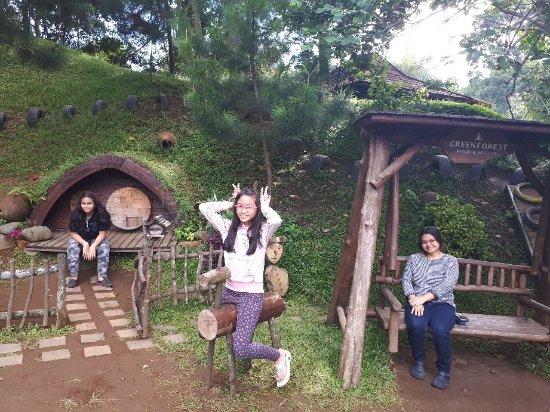 Green Forest Resort: 20180102_093031_large.jpg