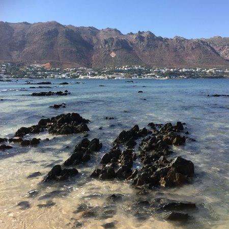 Gordon's Bay, Sudáfrica: photo2.jpg