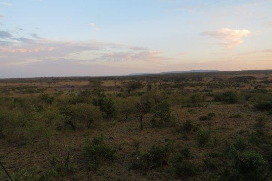 Eagle View, Mara Naboisho Picture