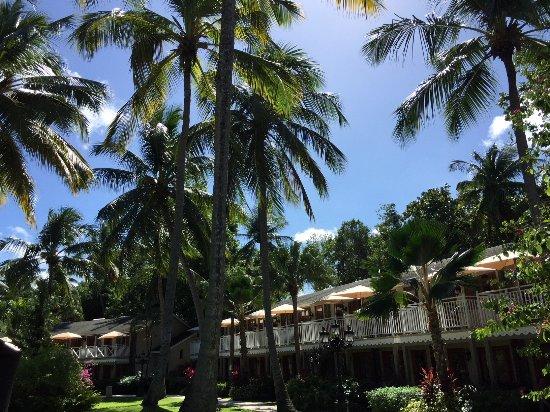 Sandals Halcyon Beach Resort St Lucia Castries All
