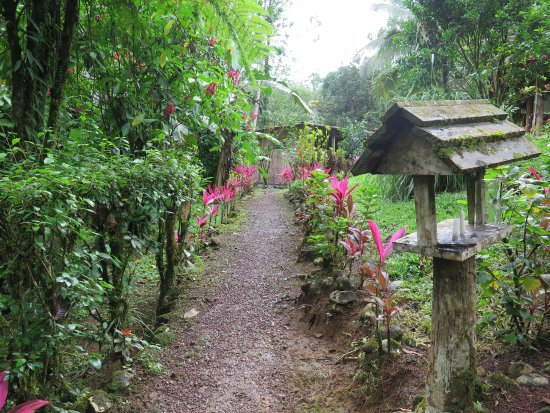 La Carolina Lodge: Camino de la habitación