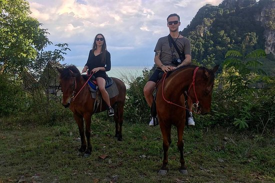 Krabi Nature Horse Riding: viewpoint