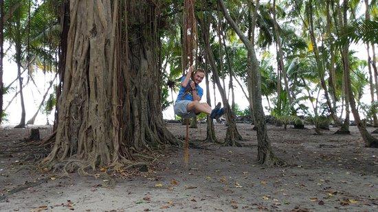 Beach Stay Maldives: Local island tour, tree