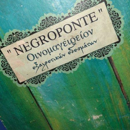 Negroponte: photo0.jpg