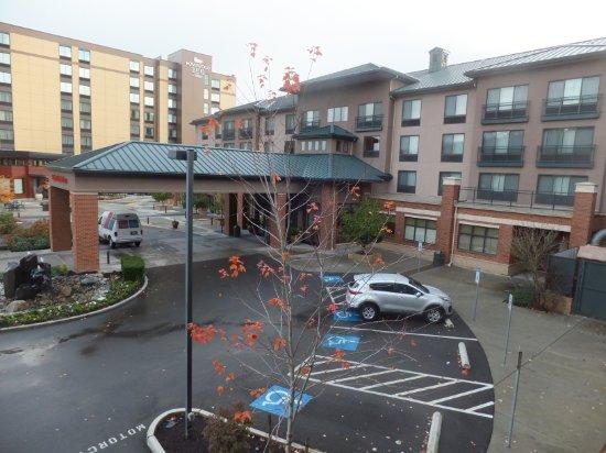 Hilton Garden Inn Seattle Issaquah Wa Omd Men Och Prisj Mf Relse Tripadvisor