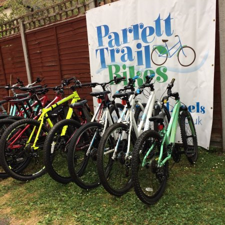 Langport, UK: A few of our bikes for hire.