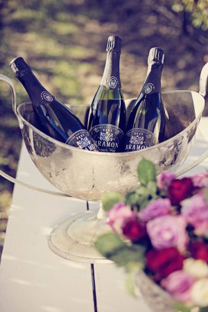 Hog Hollow Horse Trails: Savour delectable local wine and sparkling wine whilst enjoying your carriage trail.