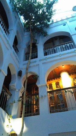 Hotel Riad Casa Hassan Restaurante: Uma árvore na sala