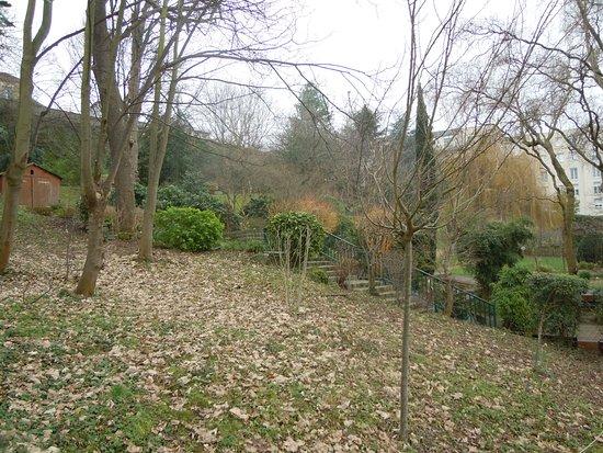 Tripadvisor sorte de plantes jardin botanique for Boulevard du jardin botanique