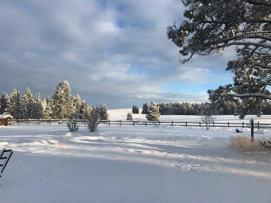 Cranbrook, Canadá: snowy fields