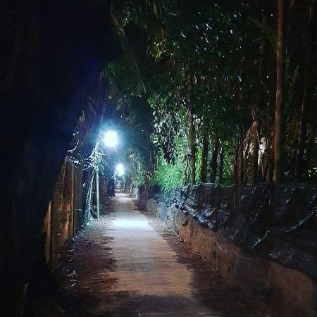 Pen Siri House: The path between Pensiri and the beach/village