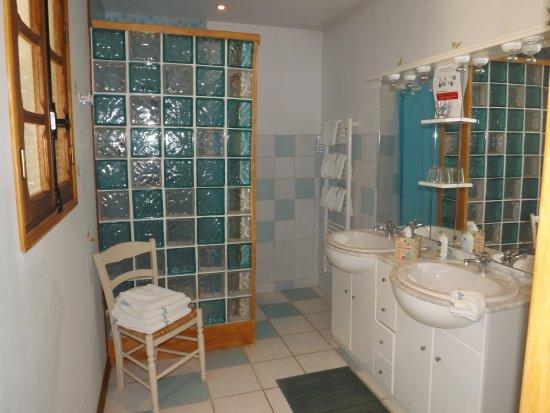 Montigny-les-Monts, Prancis: Salle de bain Chambre La Forêt d'Orient