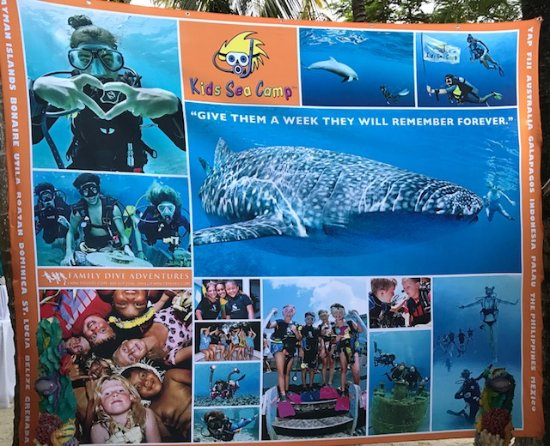 Mayan Princess Beach & Dive Resort: Kids Sea Camp