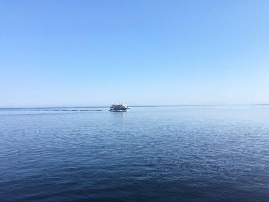 Baie Sainte-Catherine, Canada: Parco Marino Saguenay St. Lawrence