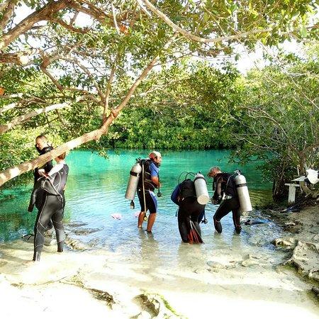 Casa Cenote: IMG_20180108_215506_140_large.jpg