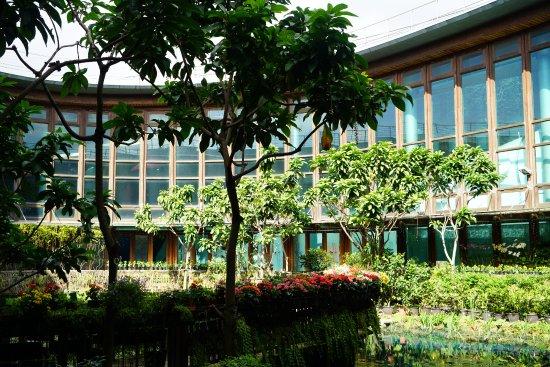 Xinsheng Park