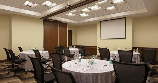 Hilton Garden Inn New Delhi / Saket: Meeting room