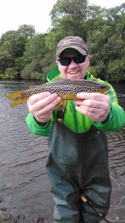 Nice Brown Trout on River Laune, County Kerry, Ireland