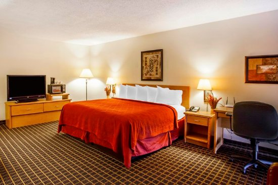 guest room picture of red lion hotel conference center. Black Bedroom Furniture Sets. Home Design Ideas