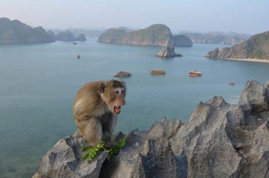 2-day explore Cat Ba Island...
