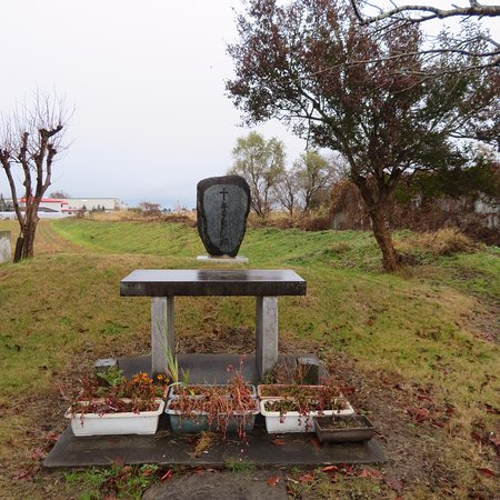 Aizuwakamatsu, Japan: The Christian Monument was in the middle of fields.