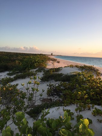 Pine Cay-billede