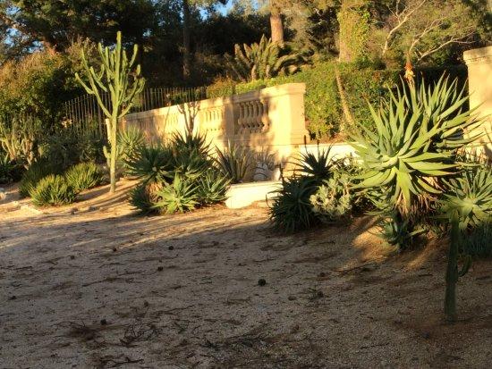 Le jardin de succulentes de la villa eilenroc bild fr n for Antibes le jardin