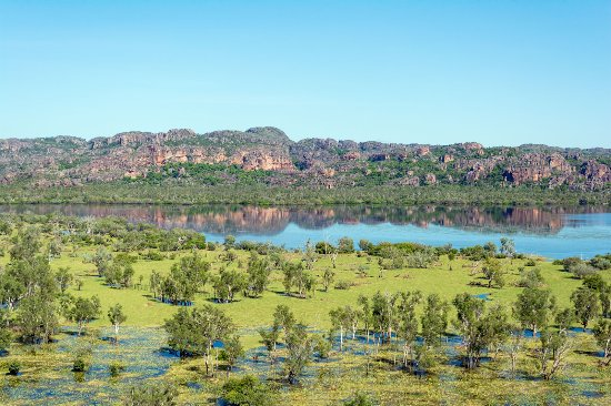 Jabiru, Australien: We adore the wetlands! Did you know that are actually wet all year round!
