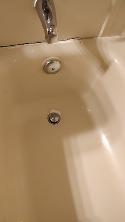 Quality Inn & Suites: 4) Peeling inside the bathtub.