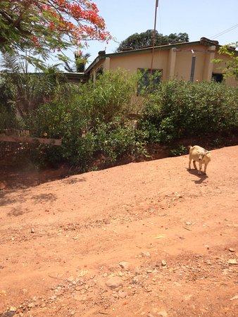 Biriwa, Ghana: strada di villaggio