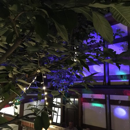 Eberswalde, Alemania: Geburtstagsfeier im Innenhof