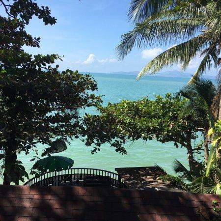 Small bit of paradise