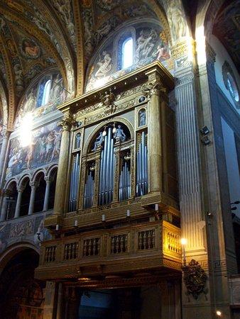 Cattedrale di Parma: Orgue