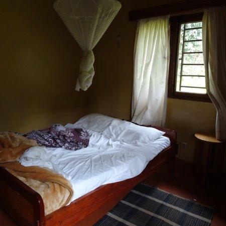 Gisakura, Ruanda: photo3.jpg