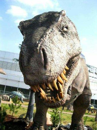 DinoPark Praha: FB_IMG_1515586604491_large.jpg