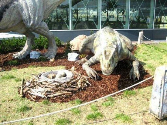 DinoPark Praha: FB_IMG_1515586597506_large.jpg