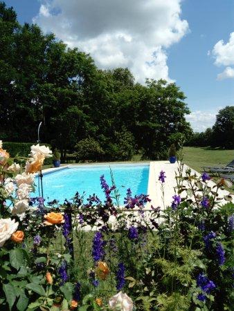 Manegat Bed&Breakfast: The pool