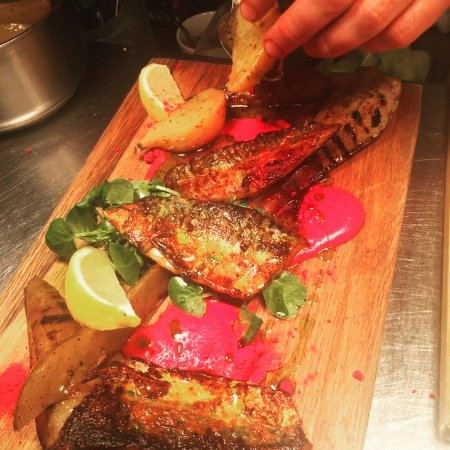 Harissa sea trout with griddled pear, cumin and beetroot