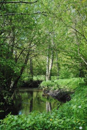 Saint-Erblon, France: la campagne environnante et la rivière l'Ise