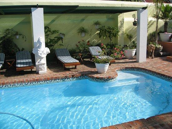Pool - Picture of Kingna Lodge, Montagu - Tripadvisor