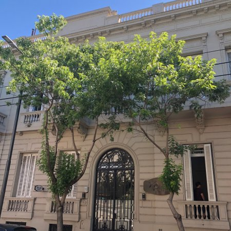 Picture of 70 30 hostel buenos aires for Casa jardin hostel buenos aires