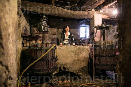 Agriturismo Castrum Normanno: ..eravamo qua.quando la mia famiglia faceva il vino con i piedi..questa è la vasca