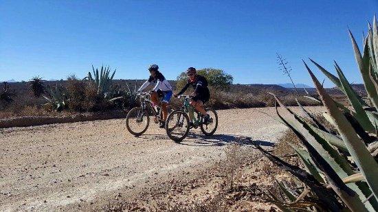 Riverside Guest Lodge: Great MTB trails!