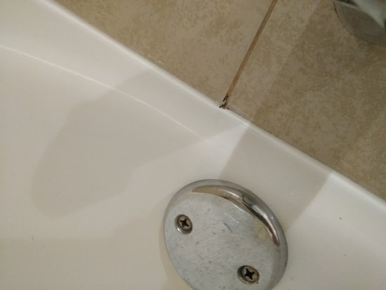 DoubleTree by Hilton Hotel & Suites Jersey City: Moldy Bathroom Tile